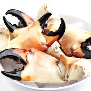 Stone Crabs (Gastro)